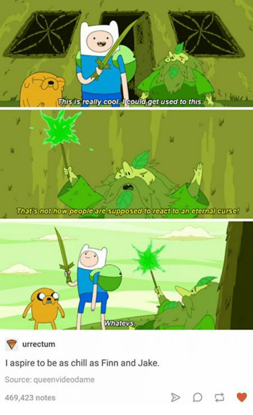 Chill, Finn, and Cool: his is realy cool.could get used to this  That's not how people are supposed to react to an eternal curse  Whatevs  マurrectum  I aspire to be as chill as Finn and Jake.  Source: queenvideodame  469,423 notes