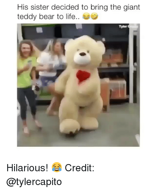 Life, Memes, and Bear: His sister decided to bring the giant  teddy bear to life..  Tyler Hilarious! 😂 Credit: @tylercapito