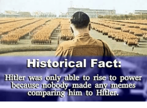 Memes, Hitler, and Power: Historical Fact  Hitler was only able to rise to power  made any memeS  comparing him to