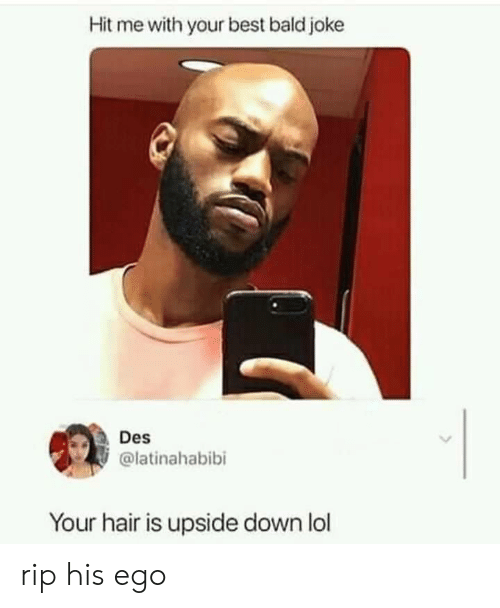 Lol, Best, and Hair: Hit me with your best bald joke  Des  @latinahabibi  Your hair is upside down lol rip his ego