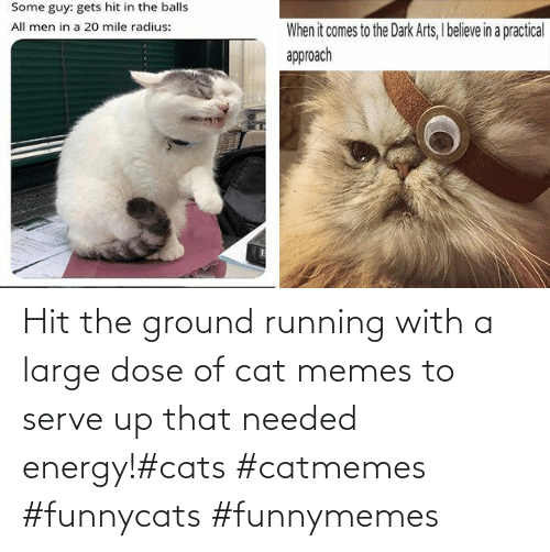 Cats, Energy, and Memes: Hit the ground running with a large dose of cat memes to serve up that needed energy!#cats #catmemes #funnycats #funnymemes