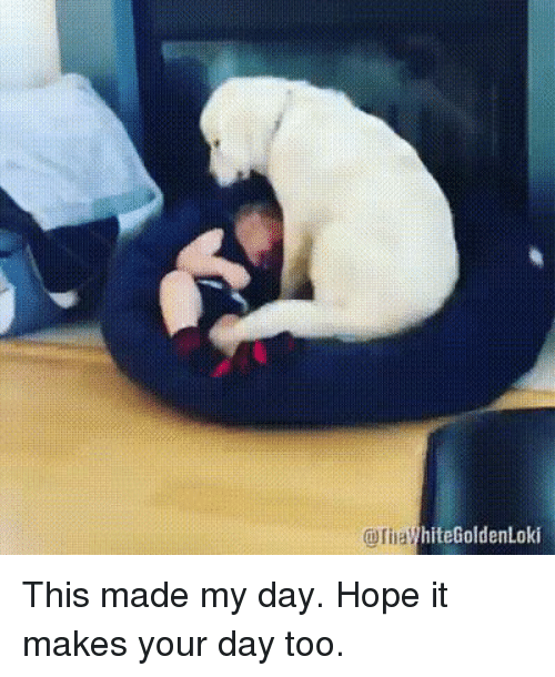 Hope, Day, and Made: hiteGoldenLoki This made my day. Hope it makes your day too.