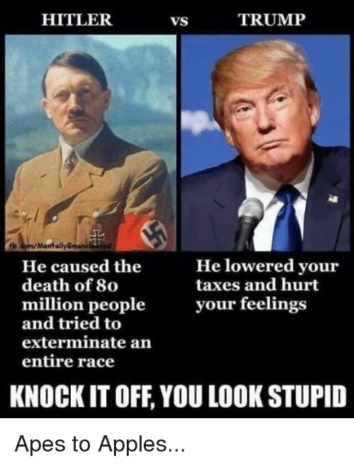 Taxes, Death, and Hitler: HITLER  VS  TRUMP  b.cpm/Manfally  manc  He lowered your  taxes and hurt  He caused the  death of 80  million peopleyour feelings  and tried to  exterminate an  entire race  KNOCK IT OFF, YOU LOOK STUPID Apes to Apples...