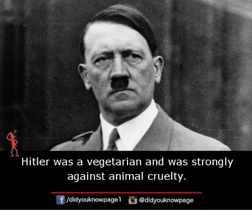 Memes, Animal, and Hitler: Hitler was a vegetarian and was strongly  against animal cruelty  @didyouknowpage