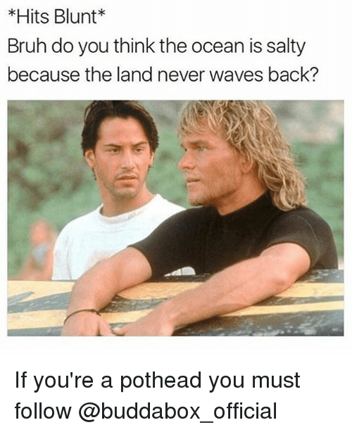 Girl Memes, Wave, and Oceans: *Hits Blunt  Bruh do you think the ocean is salty  because the land never waves back? If you're a pothead you must follow @buddabox_official