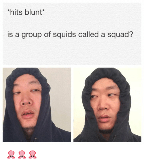 Memes, Squad, and 🤖: *hits blunt  is a group of squids  called a squad? 🦑🦑🦑