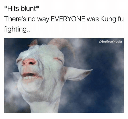 Memes, Fight, and 🤖: Hits blunt  There's no way EVERYONE was Kung fu  fighting  OTopTreeMedia