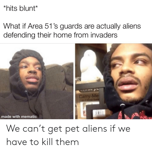 Reddit, Aliens, and Home: *hits blunt*  What if Area 51's guards are actually aliens  defending their home from invaders  Carry-Me  mEsle Svt  made with mematic We can't get pet aliens if we have to kill them