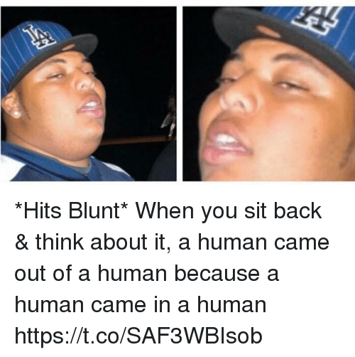 Hood, Back, and Human: *Hits Blunt*  When you sit back & think about it, a human came out of a human because a human came in a human https://t.co/SAF3WBIsob