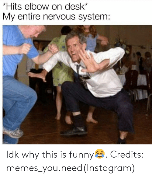 Funny, Instagram, and Memes: *Hits elbow on desk*  My entire nervous system: Idk why this is funny😂. Credits: memes_you.need(Instagram)