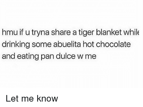Drinking, Memes, and Chocolate: hmu if u tryna share a tiger blanket while  drinking some abuelita hot chocolate  and eating pan dulce w me Let me know