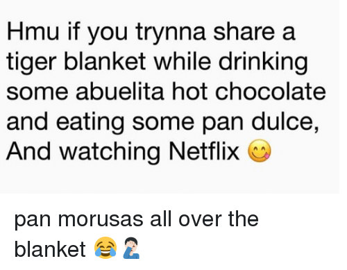 Drinking, Memes, and Netflix: Hmu if you trynna share a  tiger blanket while drinking  some abuelita hot chocolate  and eating some pan dulce,  And watching Netflix C pan morusas all over the blanket 😂🤦🏻♂️