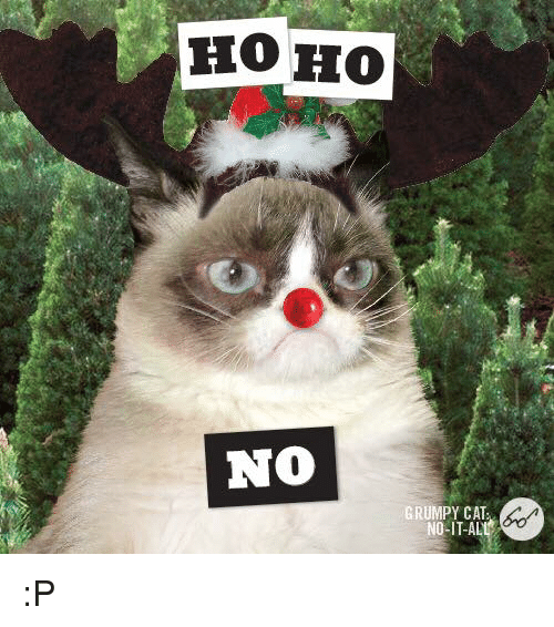 25 best no grumpy cat memes dashing through the no memes for Www home
