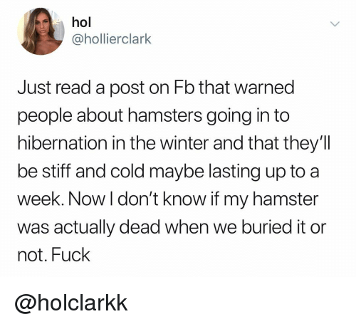 Winter, Fuck, and Hamster: hol  @hollierclark  Just read a post on Fb that warned  people about hamsters going in to  hibernation in the winter and that they'lI  be stiff and cold maybe lasting up to a  week. Now l don't know if my hamster  was actually dead when we buried it or  not. Fuck @holclarkk