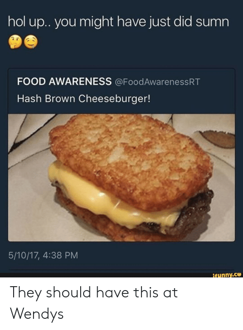Food, Hash, and Did: hol u.. you might have just did sumn  FOOD AWARENESS @FoodAwarenessRT  Hash Brown Cheeseburger!  5/10/17, 4:38 PM  ifunny.co They should have this at Wendys