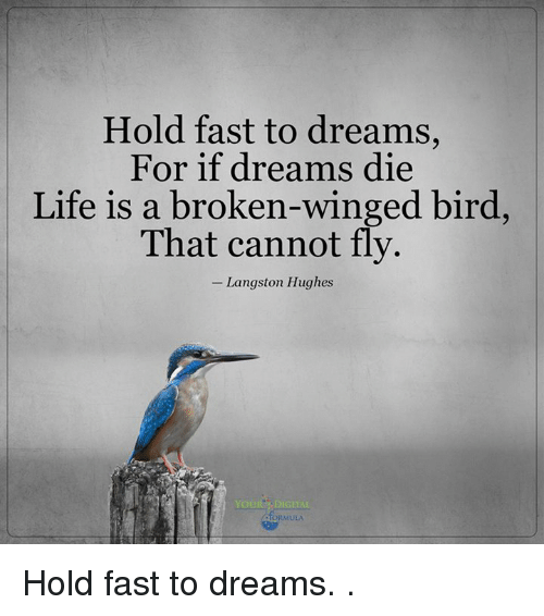 Life, Memes, and Dreams: Hold fast to dreams,  For if dreams die  Life is a broken-winged bird,  That cannot fly.  Langston Hughes  YOUR DIGITAL Hold fast to dreams.  .