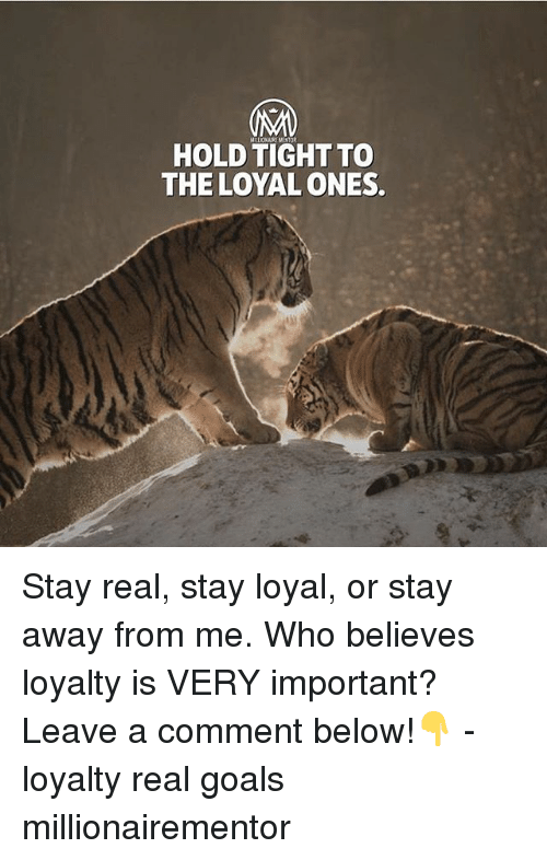 Goals, Memes, and 🤖: HOLD TIGHT TO  THE LOYAL ONES Stay real, stay loyal, or stay away from me. Who believes loyalty is VERY important? Leave a comment below!👇 - loyalty real goals millionairementor