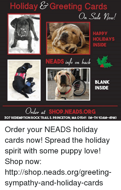 Holiday greeting cards on salt now happy holidays inside neads in memes puppies and puppy holiday greeting cards on salt now happy holidays m4hsunfo