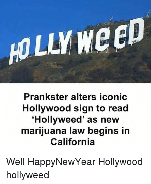 Memes, California, and Marijuana: HOLLY Weep  Prankster alters iconic  Hollywood sign to read  Hollyweed' as new  marijuana law begins in  California Well HappyNewYear Hollywood hollyweed