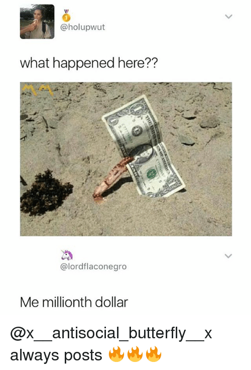 Butterfly, Antisocial, and Dank Memes: @holupwut  what happened here??  @lordflaconegro  Me millionth dollar @x__antisocial_butterfly__x always posts 🔥🔥🔥