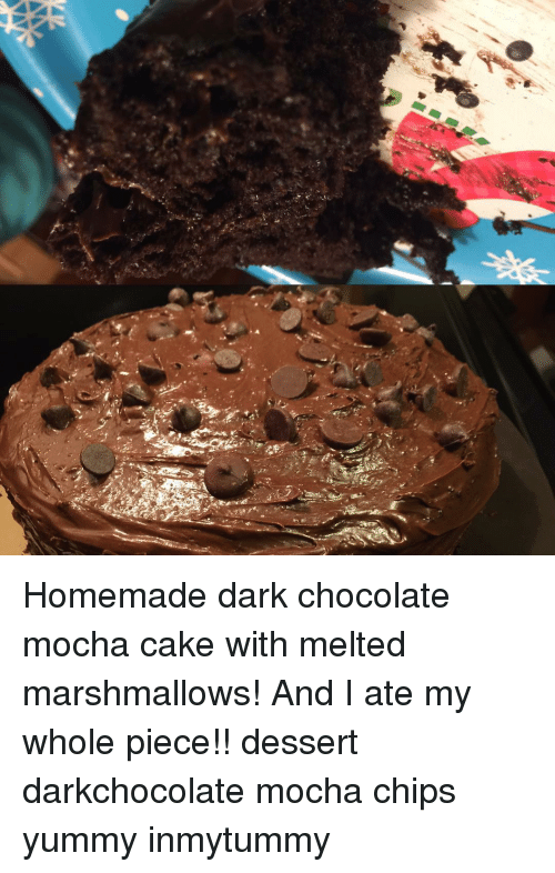 Homemade Dark Chocolate Mocha Cake With Melted Marshmallows! And I
