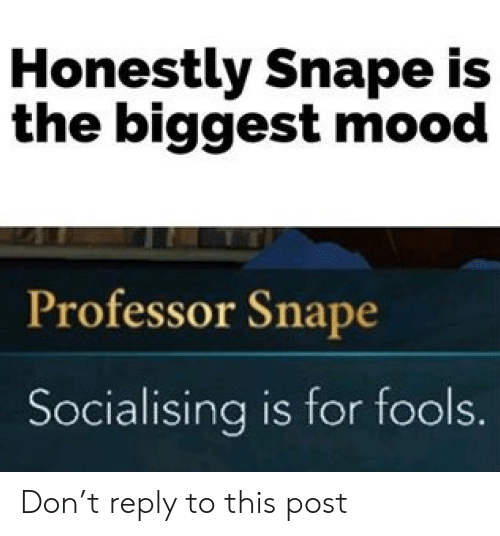Mood, Snape, and Don: Honestly Snape is  the biggest mood  Professor Snape  Socialising is for fools. Don't reply to this post