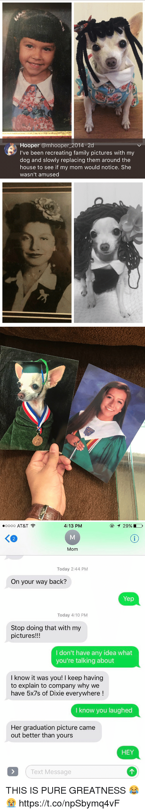 Family, At&t, and House: Hooper amhooper 2014 2d  I've been recreating family pictures with my  dog and slowly replacing them around the  house to see if my mom would notice. She  wasn't amused   RELIC   4:13 PM  oooo AT&T  Mom  Today 2:44 PM  On your way back?  Yep  Today 4:10 PM  Stop doing that with my  pictures!!!  I don't have any idea what  you're talking about  I know it was you! l keep having  to explain to company why we  have 5x7s of Dixie everywhere  know you laughed  Her graduation picture came  out better than yours  HEY  Text Message THIS IS PURE GREATNESS 😂😭 https://t.co/npSbymq4vF