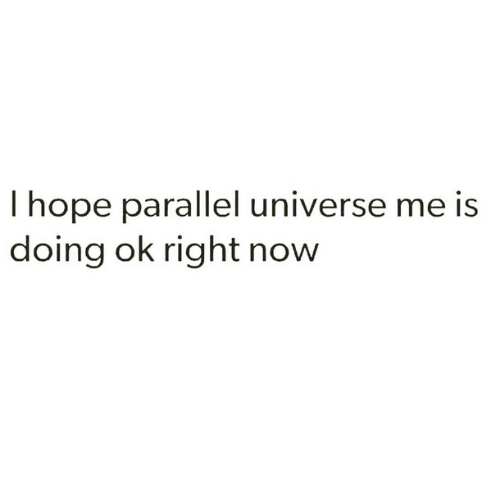 Memes, 🤖, and Parallels: hope parallel universe me is  doing ok right now