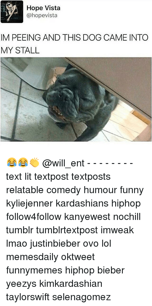 Funny, Kardashians, and Lit: Hope Vista  @hope vista  IM PEEING AND THIS DOG CAME INTO  MY STALL 😂😂👏 @will_ent - - - - - - - - text lit textpost textposts relatable comedy humour funny kyliejenner kardashians hiphop follow4follow kanyewest nochill tumblr tumblrtextpost imweak lmao justinbieber ovo lol memesdaily oktweet funnymemes hiphop bieber yeezys kimkardashian taylorswift selenagomez