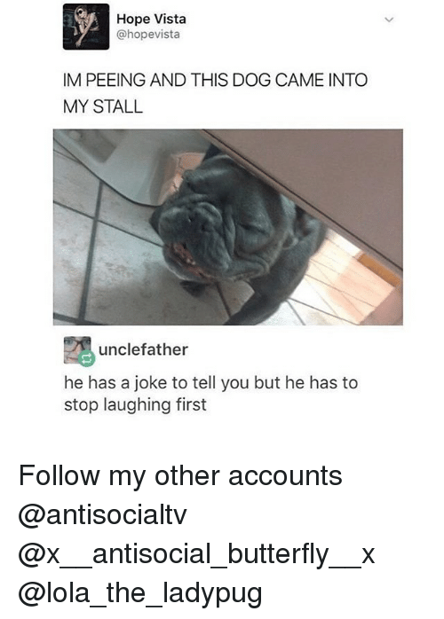 Memes, Butterfly, and Antisocial: Hope Vista  @hopevista  IM PEEING AND THIS DOG CAME INTO  MY STALL  unclefather  he has a joke to tell you but he has to  stop laughing first Follow my other accounts @antisocialtv @x__antisocial_butterfly__x @lola_the_ladypug