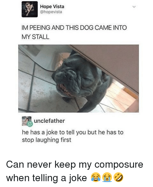 Memes, Hope, and Never: Hope Vista  @hopevista  IM PEEING AND THIS DOG CAME INTO  MY STALL  unclefather  he has a joke to tell you but he has to  stop laughing first Can never keep my composure when telling a joke 😂😭🤣