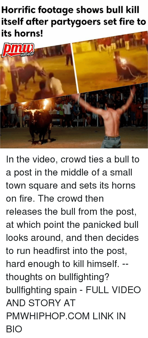 Fire, Memes, and Run: Horrific footage shows bull kill  itself after partygoers set fire to  its horns!  HIPHOP  il In the video, crowd ties a bull to a post in the middle of a small town square and sets its horns on fire. The crowd then releases the bull from the post, at which point the panicked bull looks around, and then decides to run headfirst into the post, hard enough to kill himself. -- thoughts on bullfighting? bullfighting spain - FULL VIDEO AND STORY AT PMWHIPHOP.COM LINK IN BIO