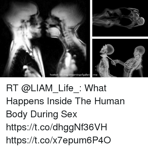 What does sex do to the human body