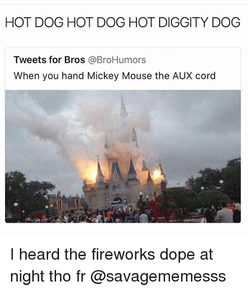 Dope, Memes, and Fireworks: HOT DOG HOT DOG HOT DIGGITY DOG  Tweets for Bros @BroHumors  When you hand Mickey Mouse the AUX cord I heard the fireworks dope at night tho fr @savagememesss