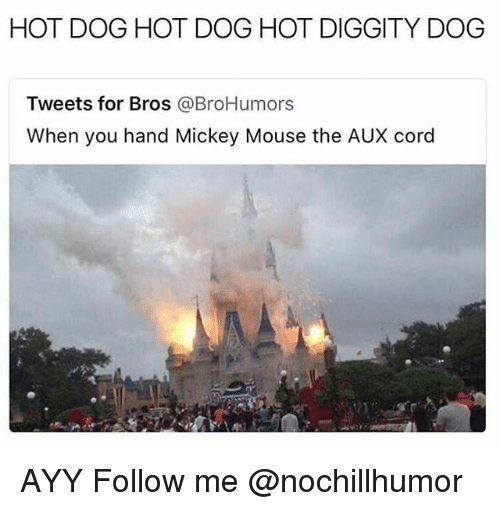 Memes, Mickey Mouse, and Mouse: HOT DOG HOT DOG HOT DIGGITY DOG  Tweets for Bros @BroHumors  When you hand Mickey Mouse the AUX cord AYY Follow me @nochillhumor