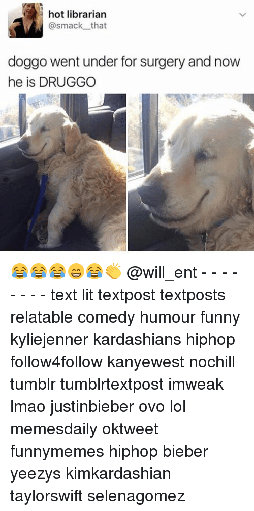 Funny, Kardashians, and Lit: hot librarian  smack that  doggo went under for surgery and now  he is DRUGGO 😂😂😂😁😂👏 @will_ent - - - - - - - - text lit textpost textposts relatable comedy humour funny kyliejenner kardashians hiphop follow4follow kanyewest nochill tumblr tumblrtextpost imweak lmao justinbieber ovo lol memesdaily oktweet funnymemes hiphop bieber yeezys kimkardashian taylorswift selenagomez