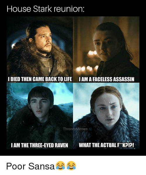 house stark reunion idied then came backtolife iam a faceless 26567656 ✅ 25 best memes about what the actual f what the actual f memes