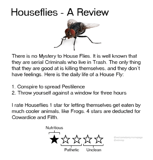 Animals, Dank, and Life: Houseflies - A Review  There is no Mystery to House Flies. It is well known that  they are serial Criminals who live in Trash. The only thing  that they are good at is killing themselves, and they don't  have feelings. Here is the daily life of a House Fly:  1. Conspire to spread Pestilence  2. Throw yourself against a window for three hours  I rate Houseflies 1 star for letting themselves get eaten by  much cooler animals, like Frogs. 4 stars are deducted for  Cowardice and Filth  Nutritious  @welcometomymemepage  @wtmmp  Pathetic Unclean