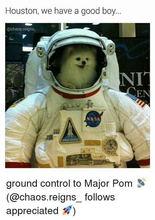 Memes, Control, and Good: Houston, we have a good boy  @chaos.reigns  EN ground control to Major Pom 📡 (@chaos.reigns_ follows appreciated 🚀)