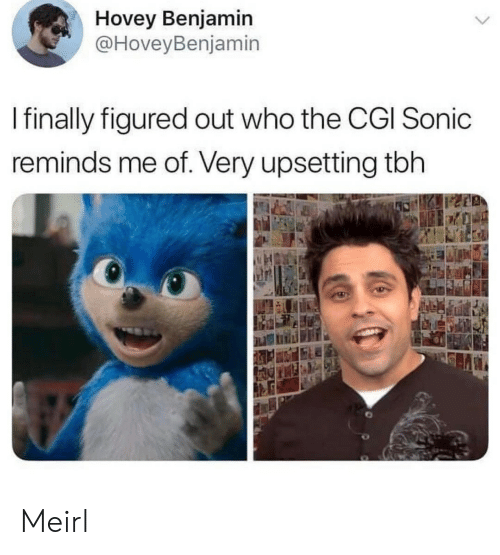 Tbh, Sonic, and MeIRL: Hovey Benjamin  @HoveyBenjamin  I finally figured out who the CGI Sonic  reminds me of. Very upsetting tbh Meirl