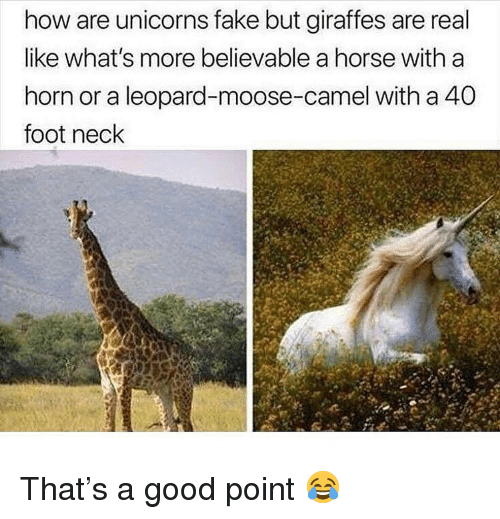 Fake, Memes, and Good: how are unicorns fake but giraffes are real  like what's more believable a horse with a  horn or a leopard-moose-camel with a 40  foot neck That's a good point 😂