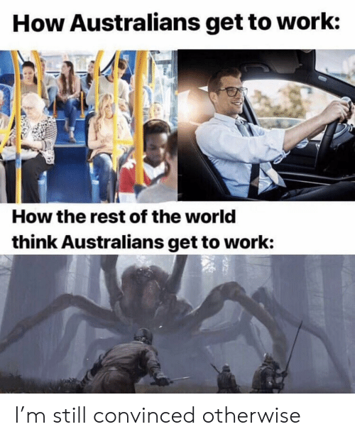 Reddit, Work, and World: How Australians get to work:  How the rest of the world  think Australians get to work: I'm still convinced otherwise