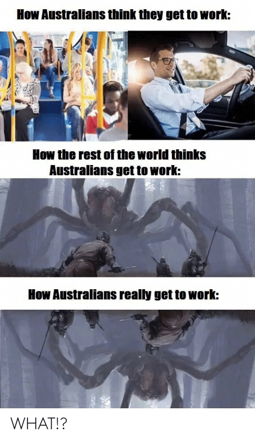 Work, World, and How: How Australians think they get to work:  How the rest of the world thinks  Australians get to work:  How Australians really get to work: WHAT!?