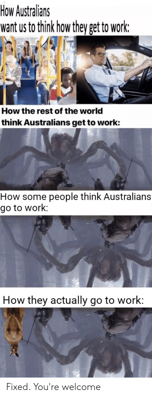 Work, World, and Dank Memes: How Australians  want us to think how they get to work:  How the rest of the world  think Australians get to work:  How some  people think Australians  go to work:  How they actually go to work: Fixed. You're welcome