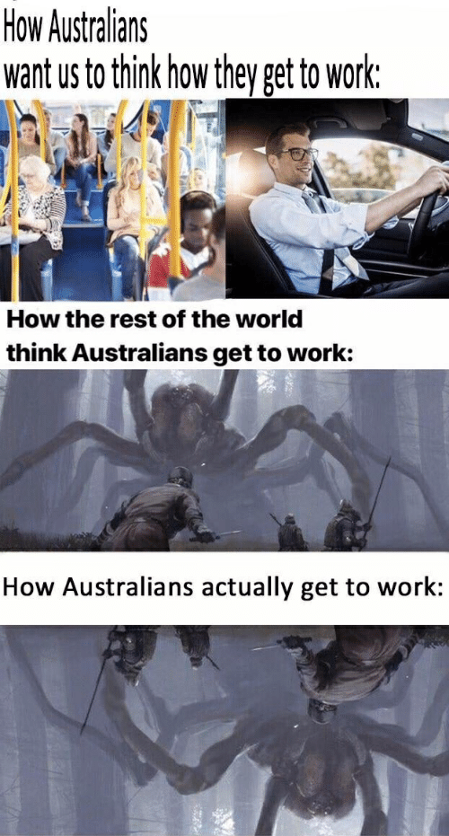 Work, World, and How: How Australians  want us to think how they get to work:  How the rest of the world  think Australians get to work:  How Australians actually get to work: