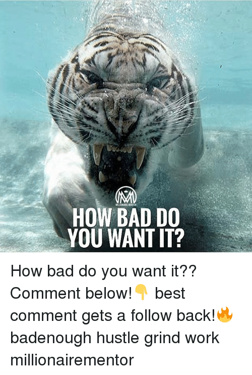 Bad, Memes, and Work: HOW BAD DO  YOU WANT IT? How bad do you want it?? Comment below!👇 best comment gets a follow back!🔥 badenough hustle grind work millionairementor