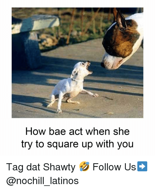 Bae, Latinos, and Memes: How bae act when she  try to square up with you Tag dat Shawty 🤣 Follow Us➡️ @nochill_latinos