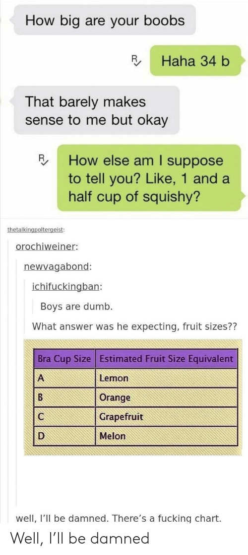 Dumb, Fucking, and Boobs: How big are your boobs  R Haha 34 b  That barely makes  sense to me but okay  How else am I suppose  to tell you? Like, 1 and a  half cup of squishy?  oroc  el  newvagabond:  ban:  Boys are dumb.  What answer was he expecting, fruit sizes??  Bra Cup Size Estimated Fruit Size Equivalent  Lemon  Orange  Grapefruit  Melon  well, I'II be damned. There's a fucking chart. Well, I'll be damned