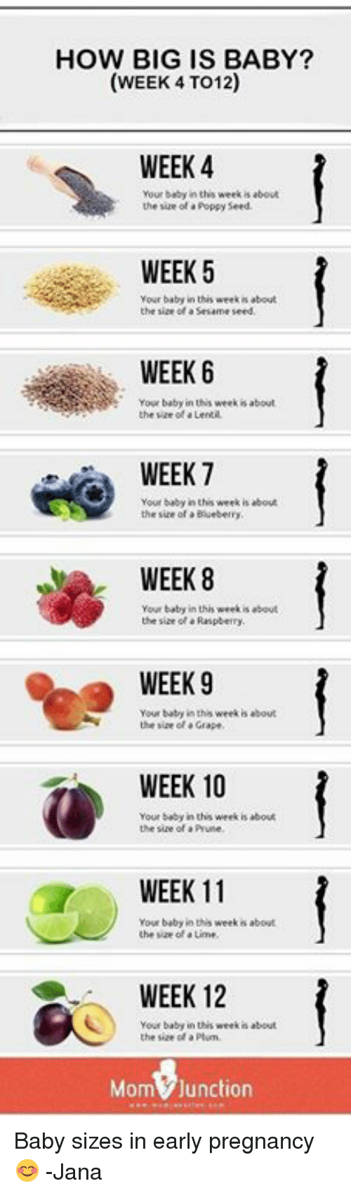 HOW BIG IS BABY? WEEK 4 TO12 WEEK 4 Your Beby in This Week Is About