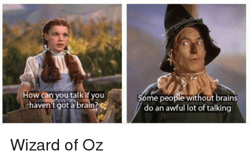 how can you talk if you havent got a brain 11517018 ✅ 25 best memes about wizard of oz wizard of oz memes